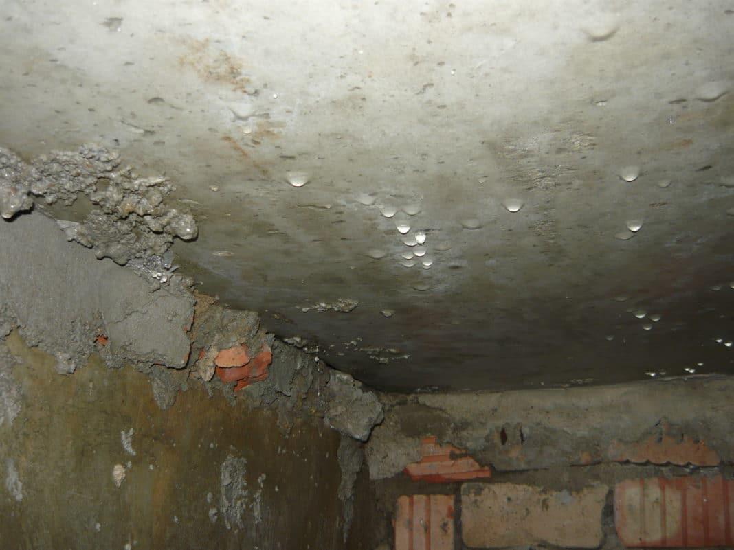 Конденсат в погребе на потолке