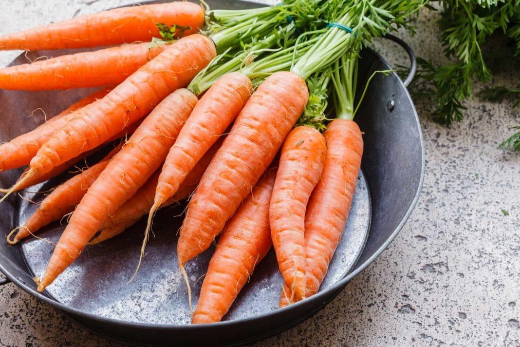 Какой сорт моркови выбрать?