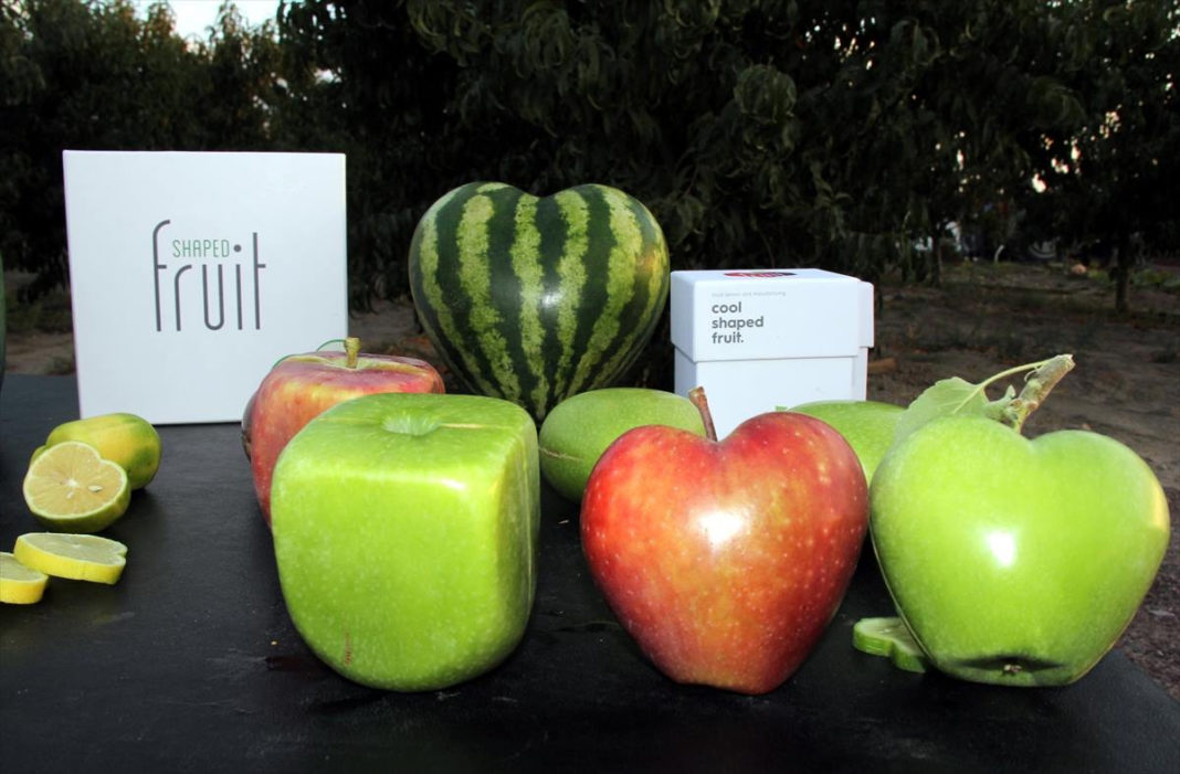 Фигурные овощи