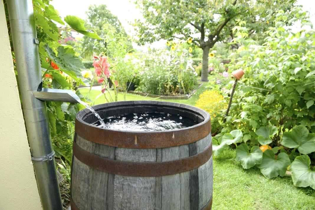 Новые способы сохранить воду в бочке на всю зиму