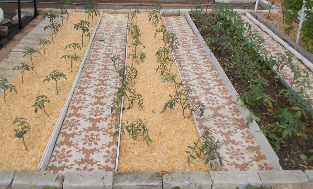 Как использовать старый палас на огороде?